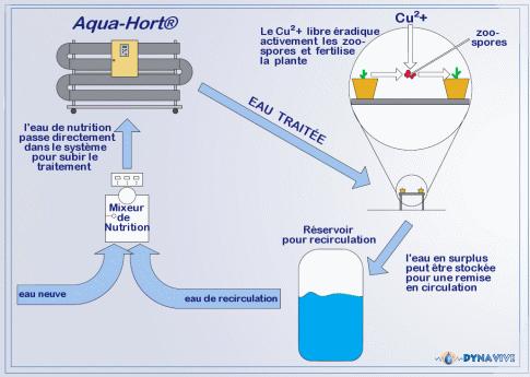 traitement eau calcaire